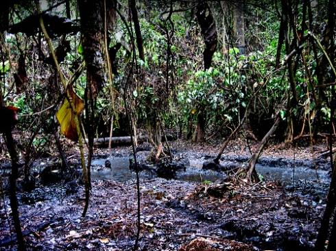 Noodtoestand in vervuild stuk jungle Peru