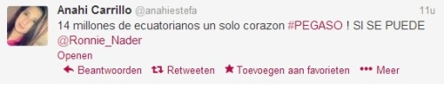 Pegaso Twitter