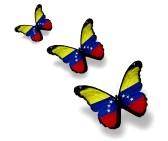 Venezuela Vlinders