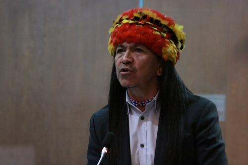 Carlos Veteri, Regeringspartij Allianza País, Antropoloog