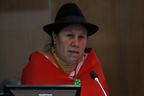 Rosa Muñoz, Regeringspartij Alianza País