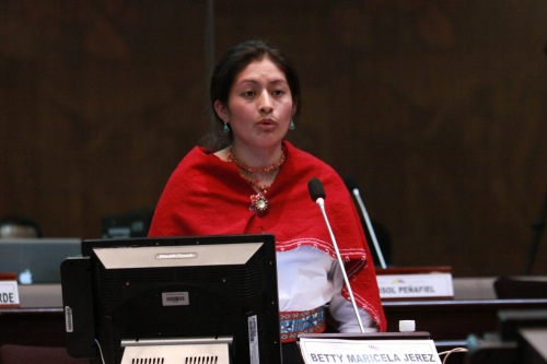 Betty Jérez, Regeringspartij Allianza País, Advocate